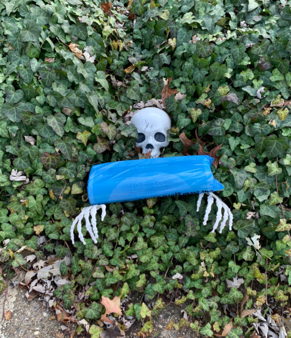 plastic skeleton with a newspaper in its hands
