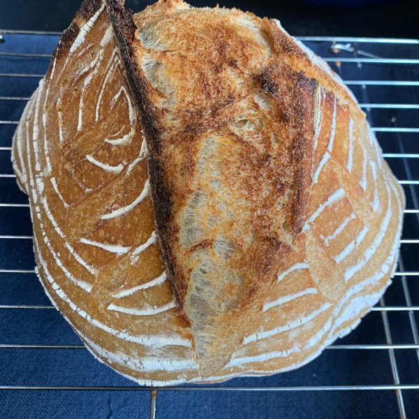 another sourdough loaf