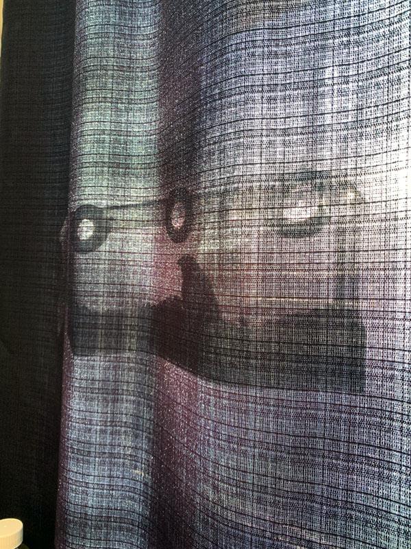 a shadow of a bird at a window birdfeeder