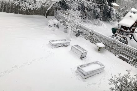 second story shot of the garden beds covered in snow