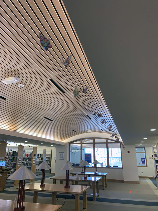 paper cranes in the library