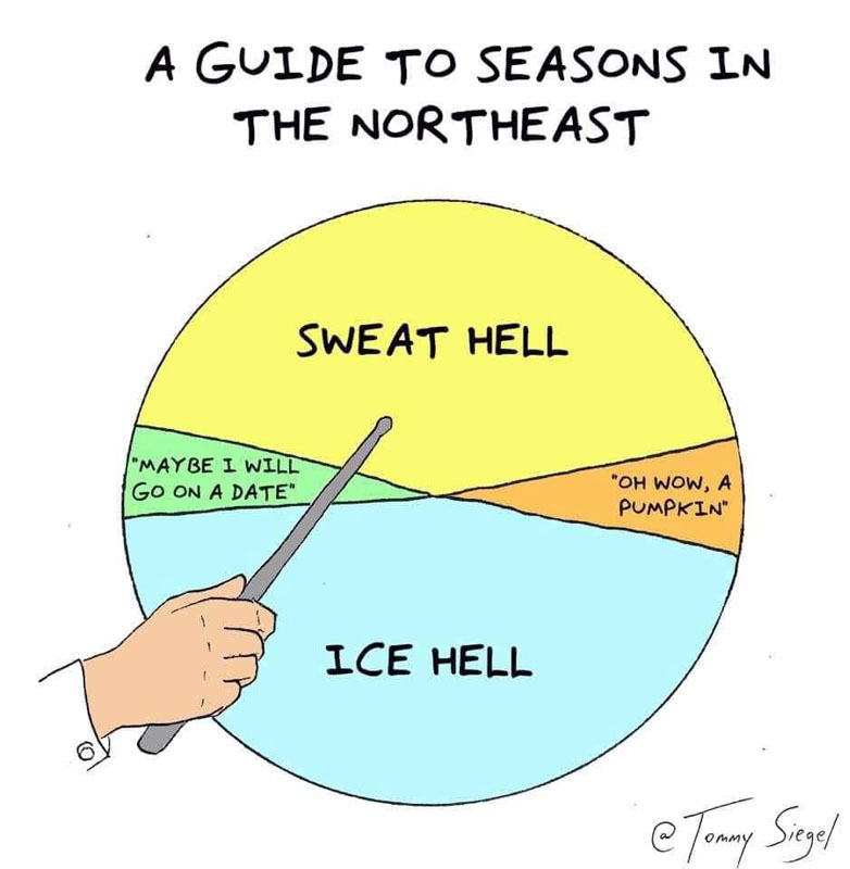 pie chart titled a guide to seasons in the northeast. giant slice says sweat hell, giant slice says ice hell, tiny slice says maybe i will go on a date, tiny slice says oh wow a pumpkin