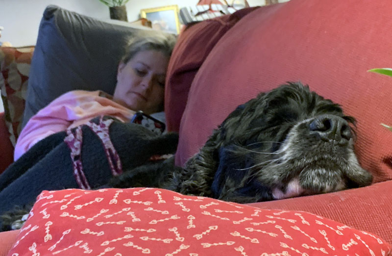 kim and murphy sleeping on the sofa