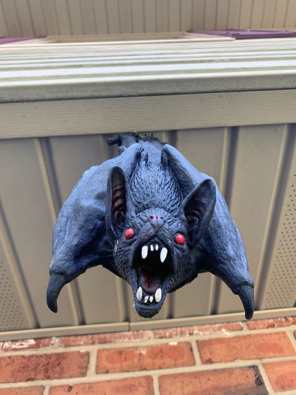 a rubber bat hanging down from a soffit